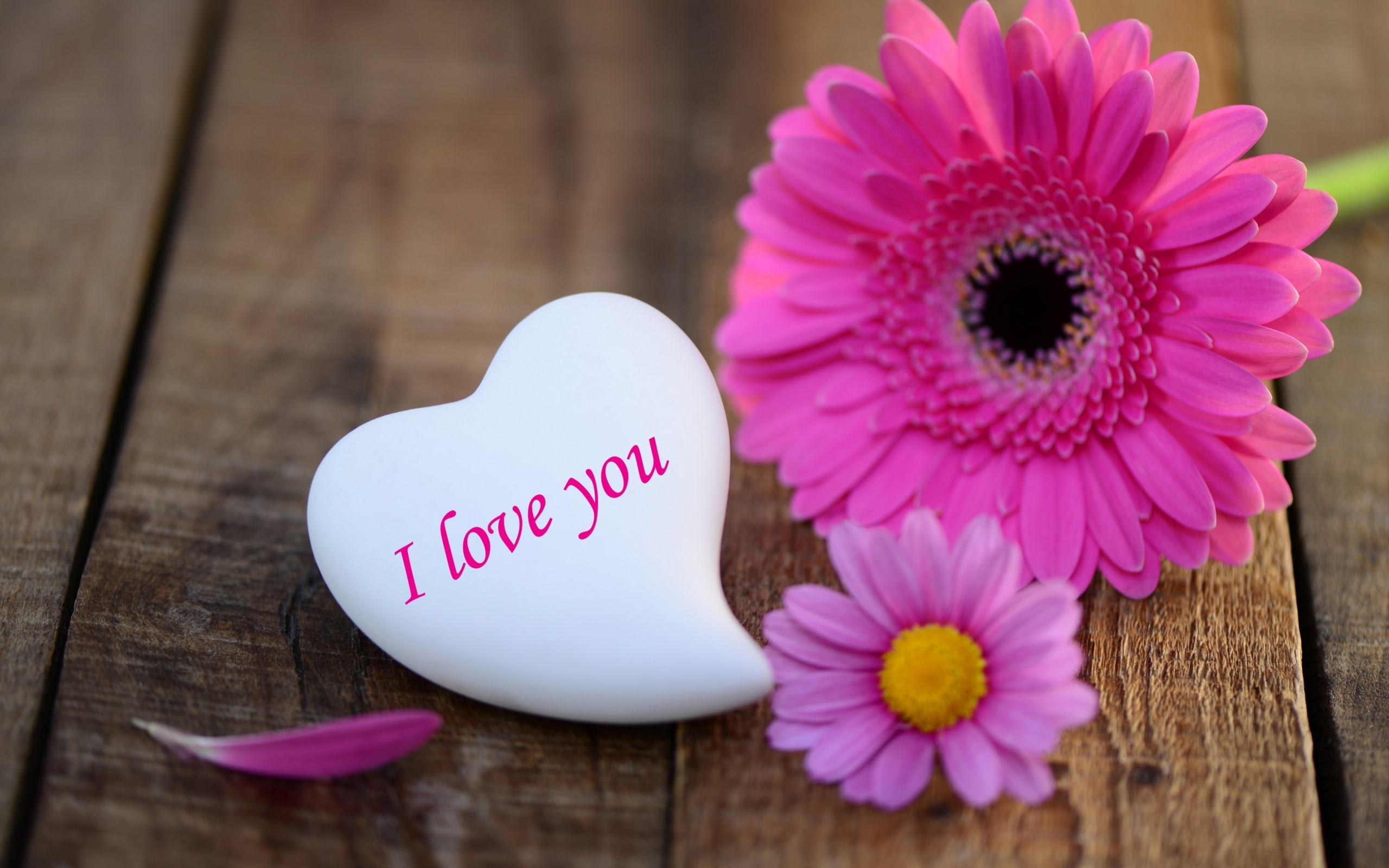 Heart Stone I Love You Wide Wallpaper Pink Daisies Heart Stone I Love
