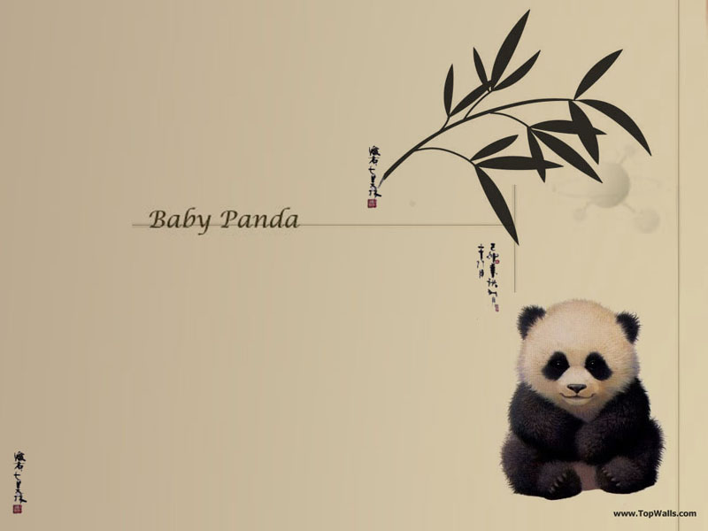 Panda Wallpapers Pictures Images