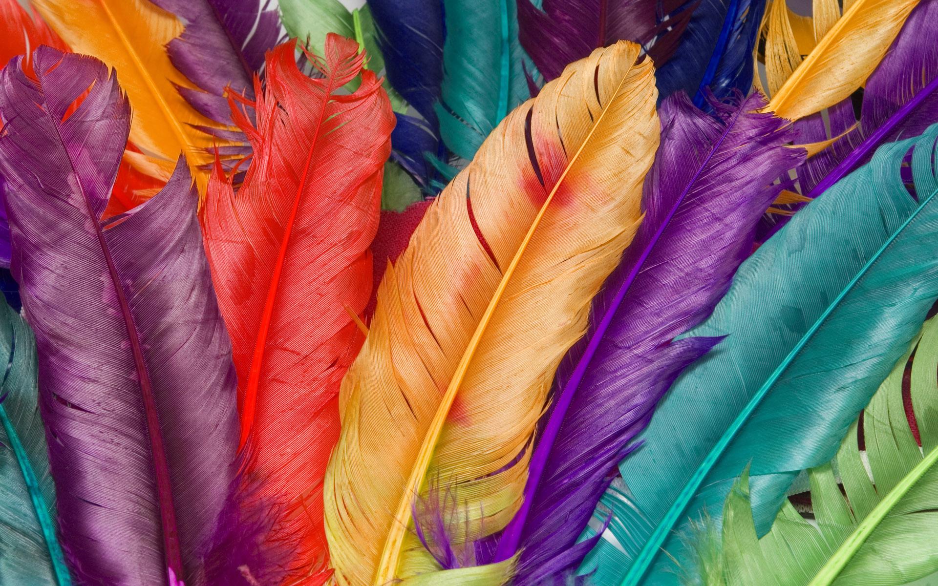 Hd wallpaper colorful - Colourful Wallpaper