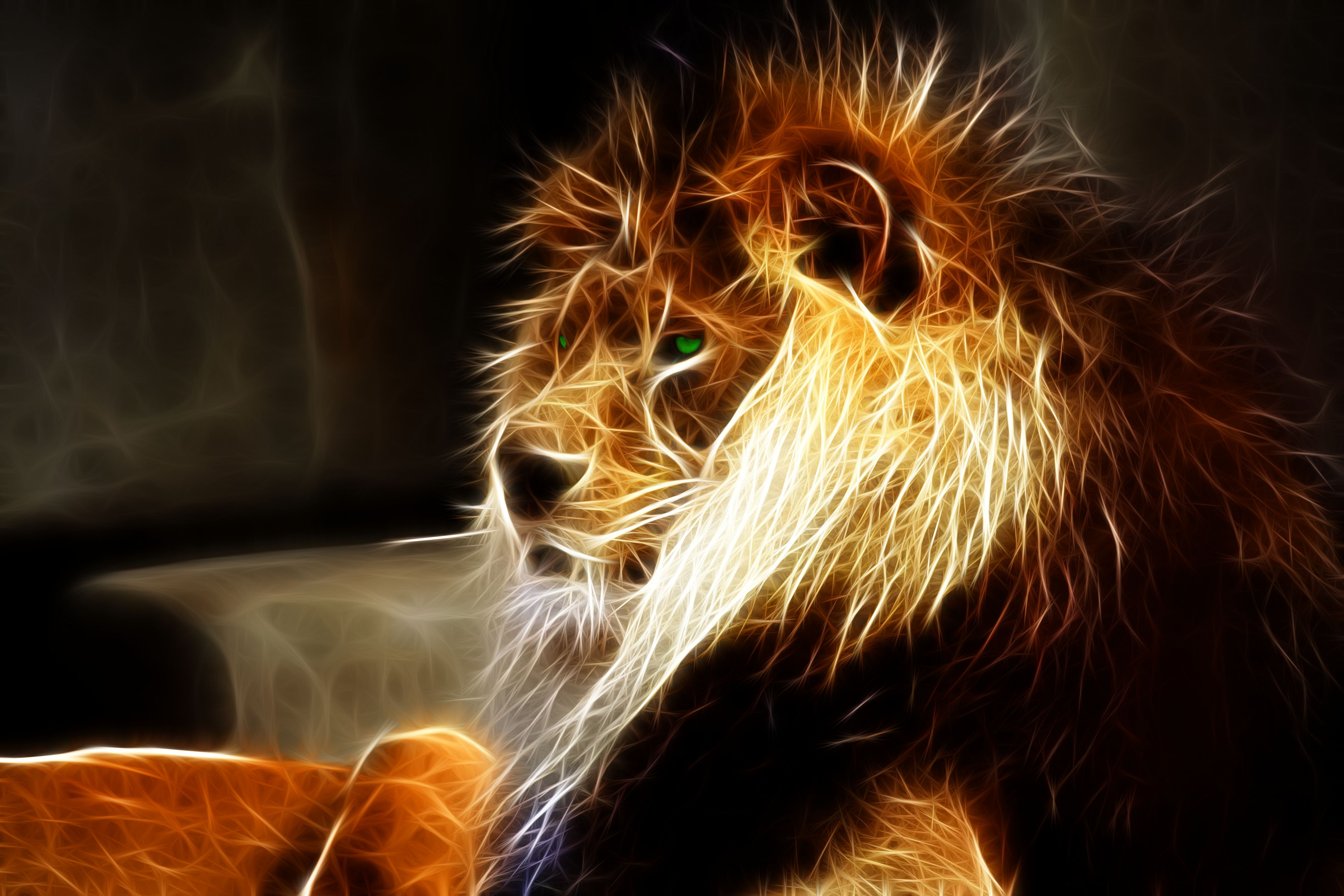 Lion Wallpapers, Pictures, Images