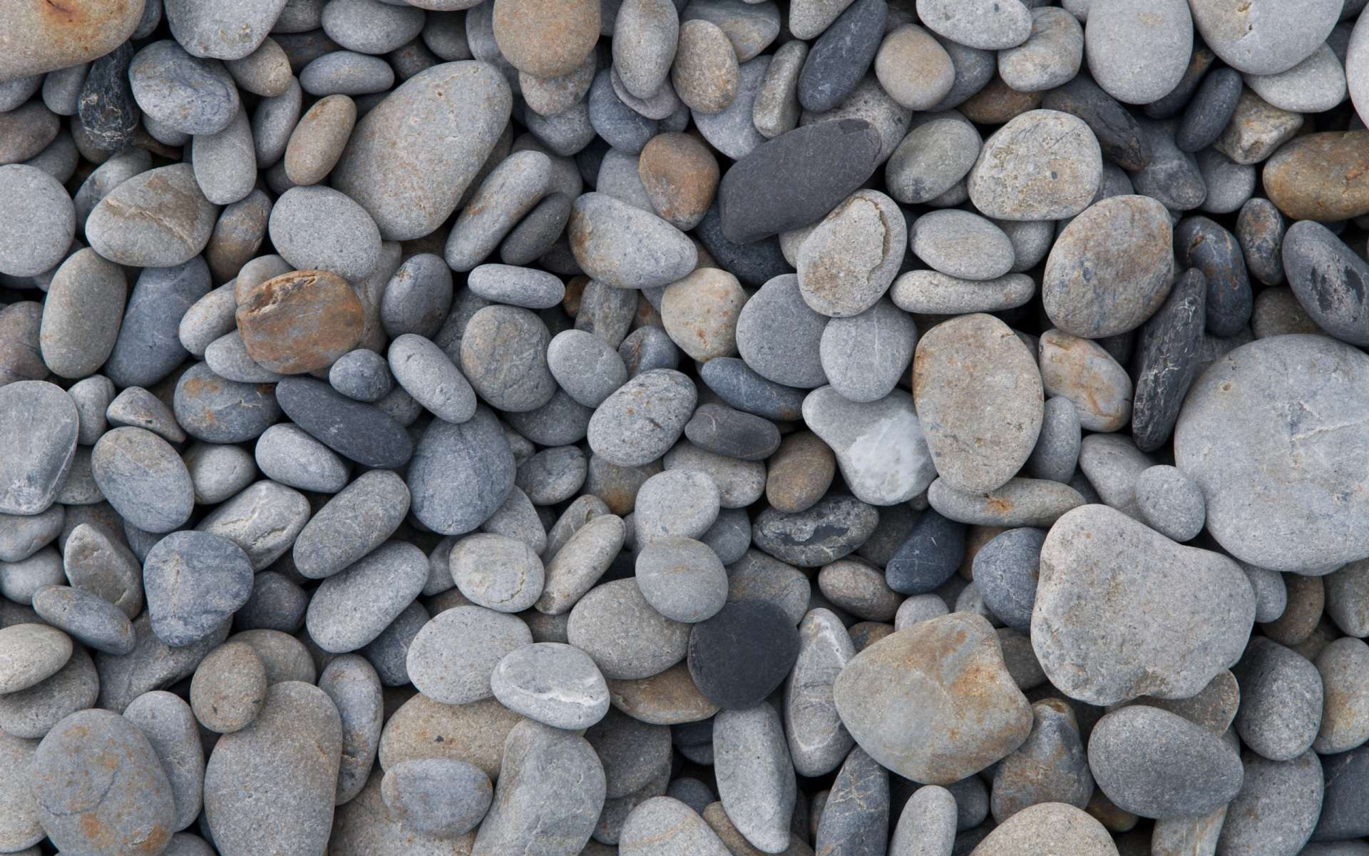 Pebbles Wallpapers, Pictures, Images