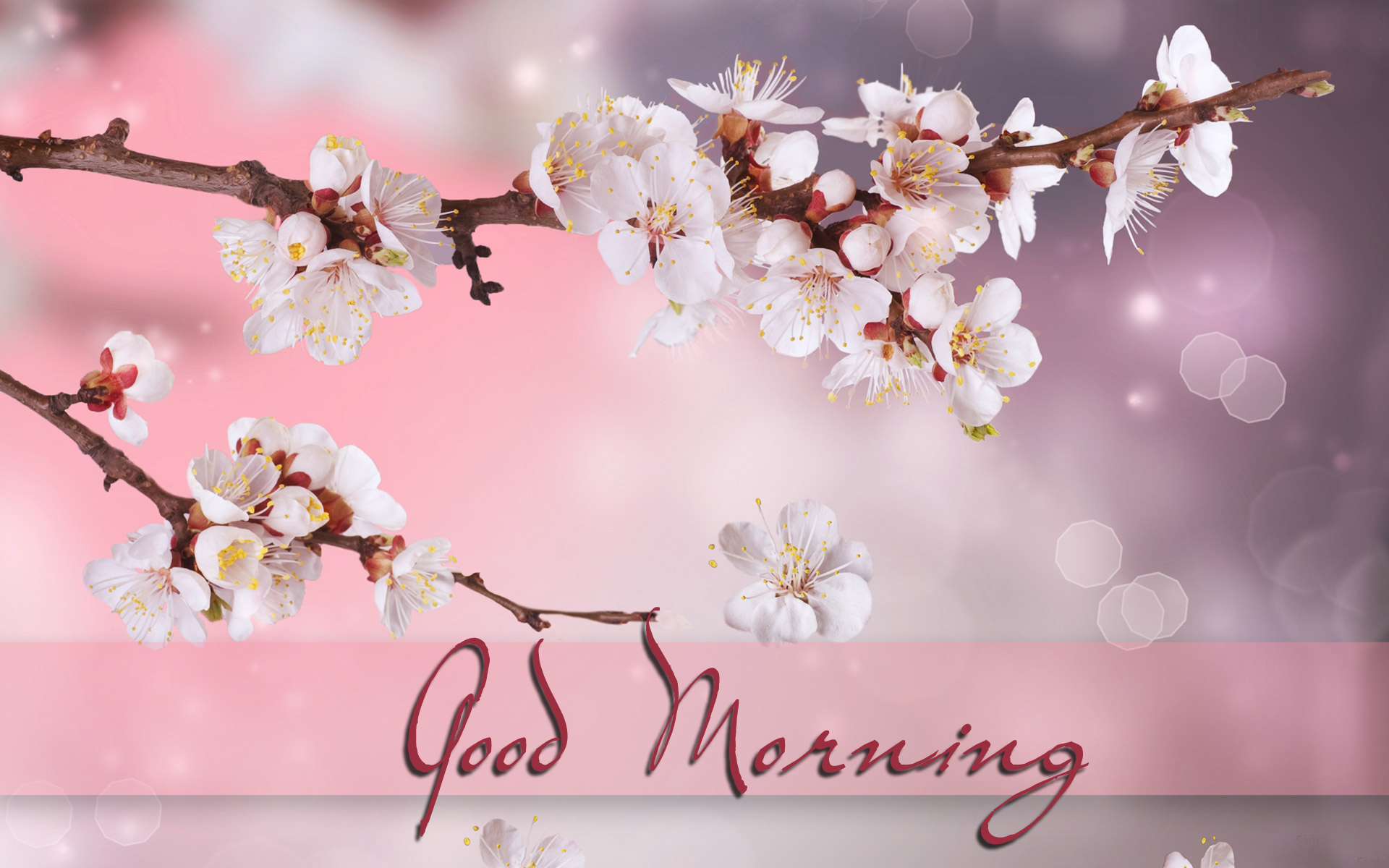 Good Morning Love Desktop Wallpaper : Good Morning wallpapers, Pictures, Images