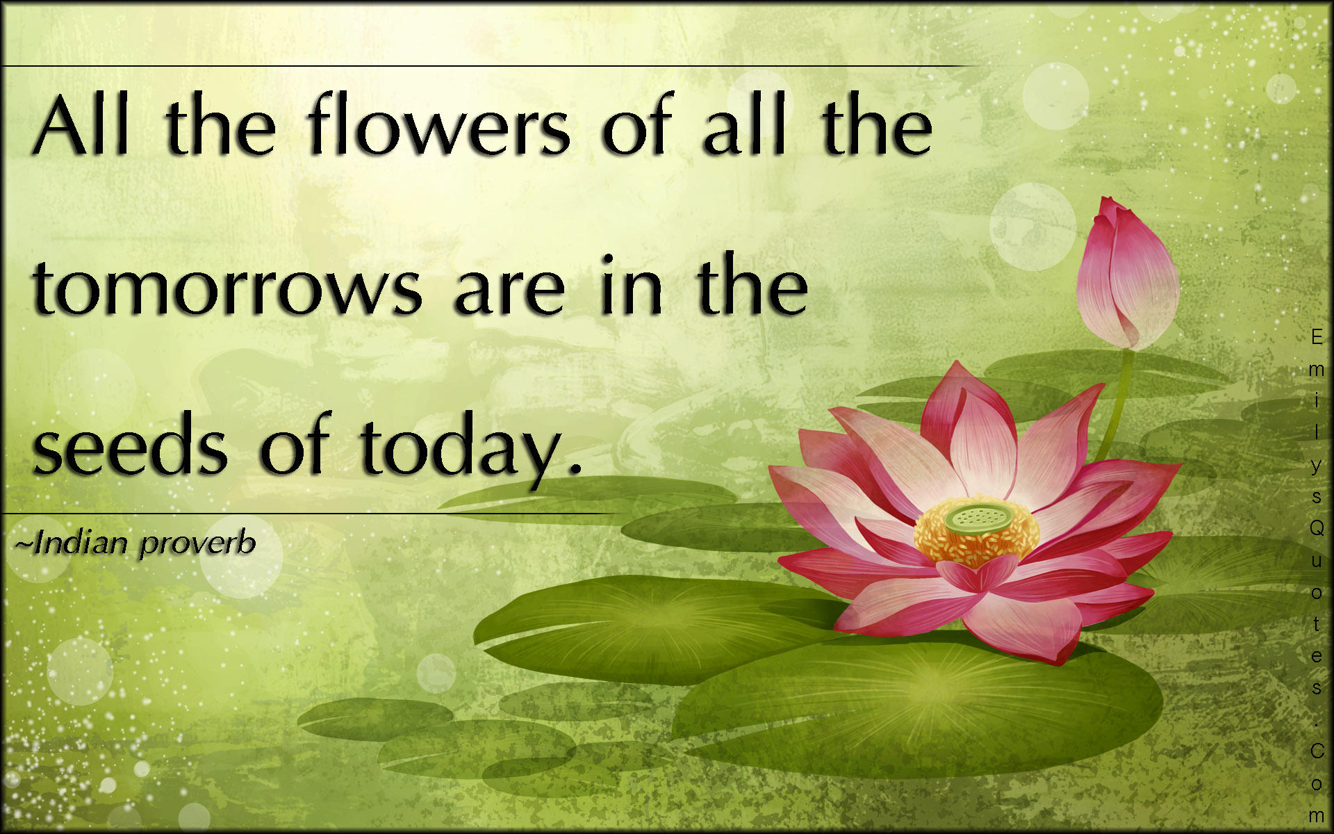Quote Related To Life Beauteous Flower Quotes Relating To Life