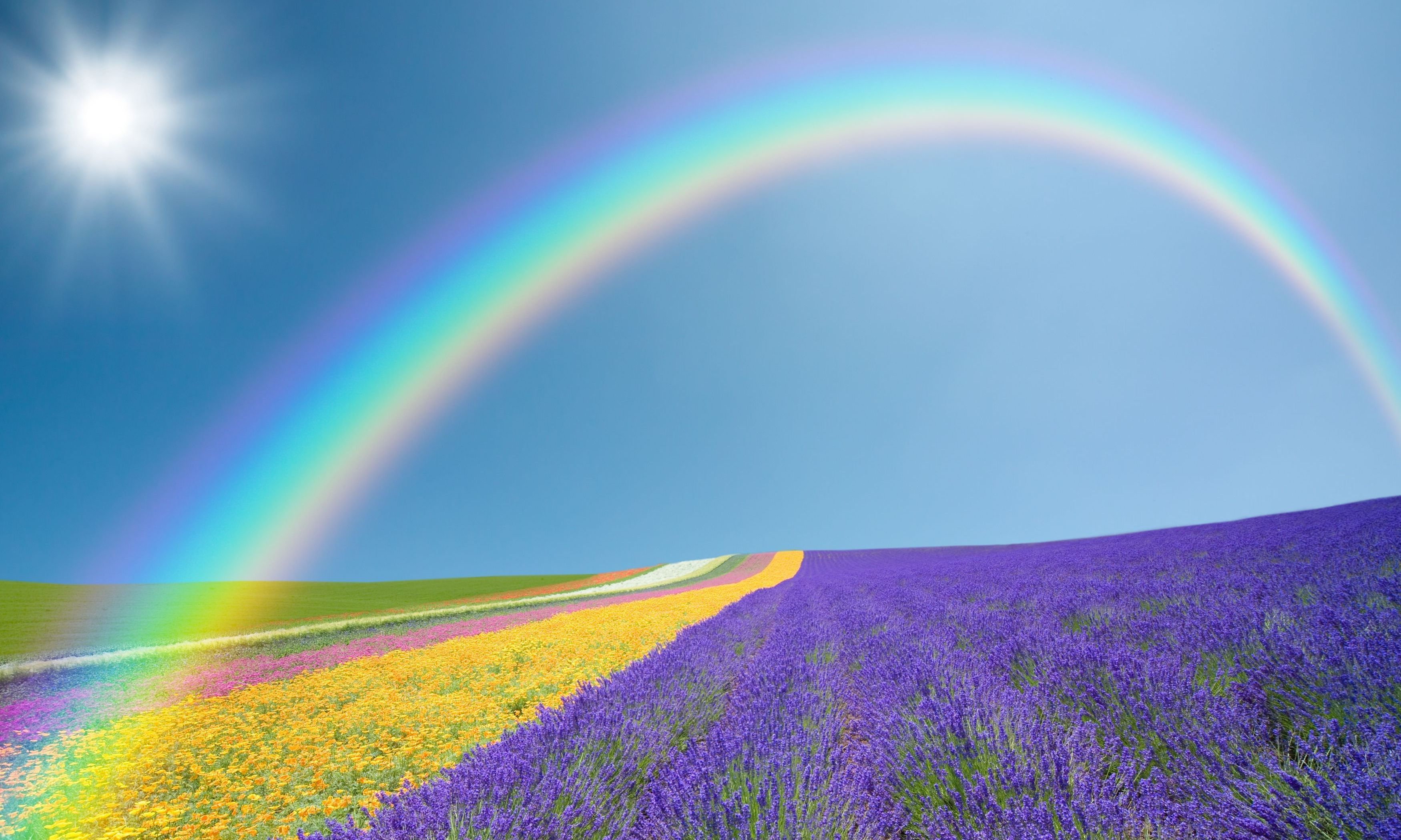 Rainbow Wallpapers Pictures Images