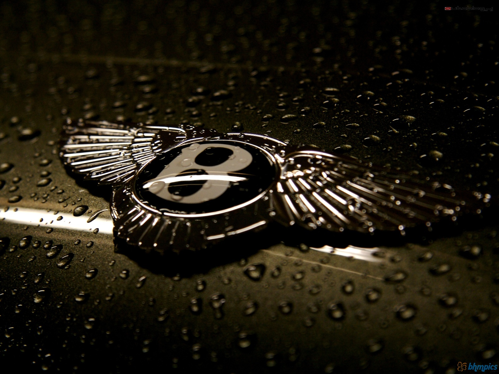 ... Bentley Logo Wallpaper ...