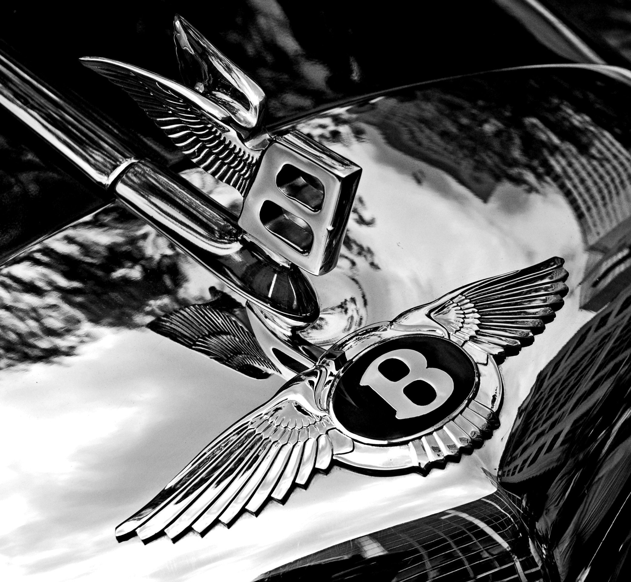 Bentley Logo Wallpapers, Pictures, Images