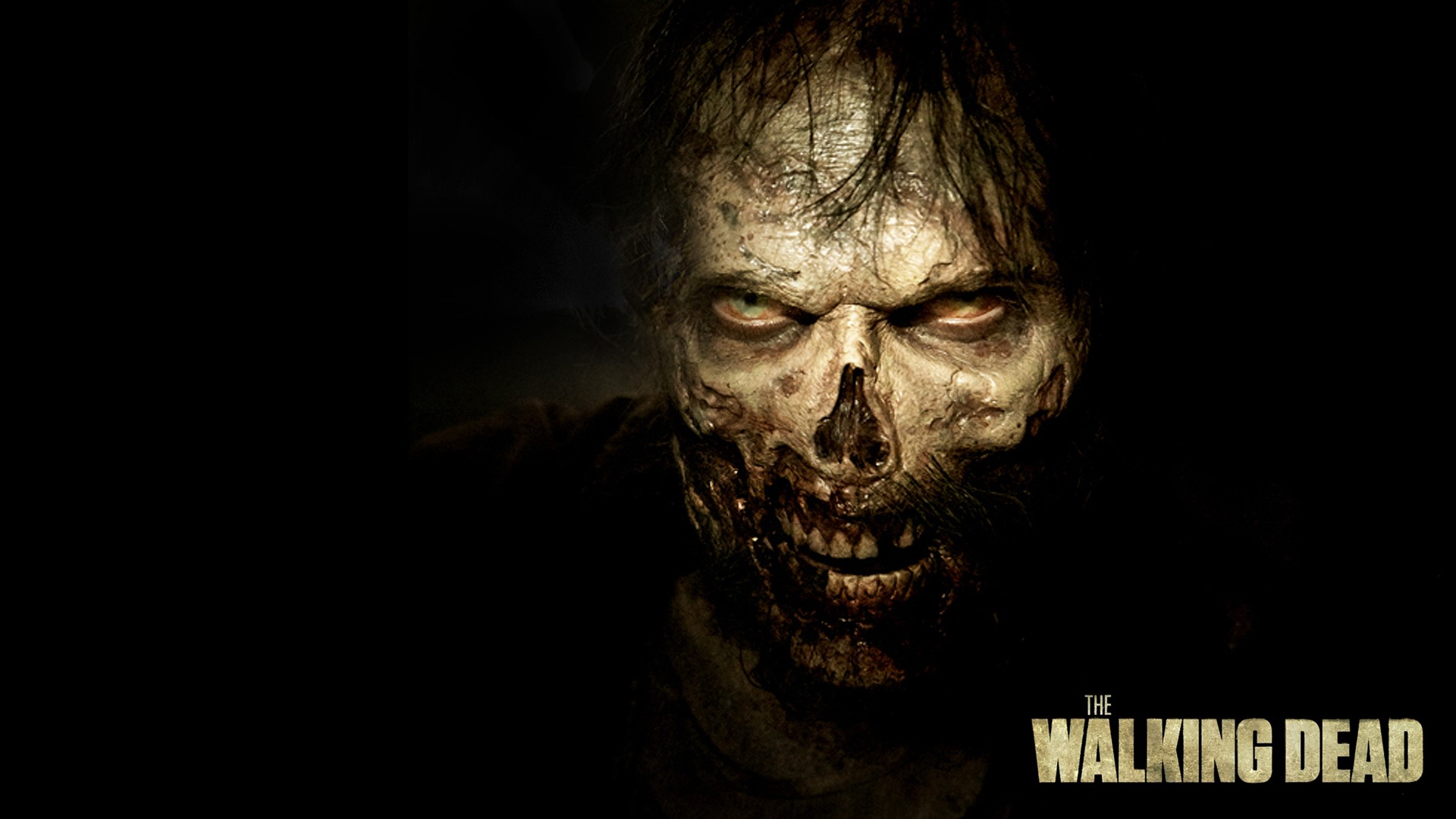 Hd wallpaper zombie -  Zombies Wallpaper Zombies Wallpaper