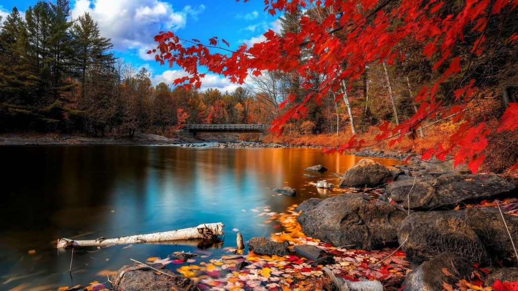 Autumn Scenery Wallpaper