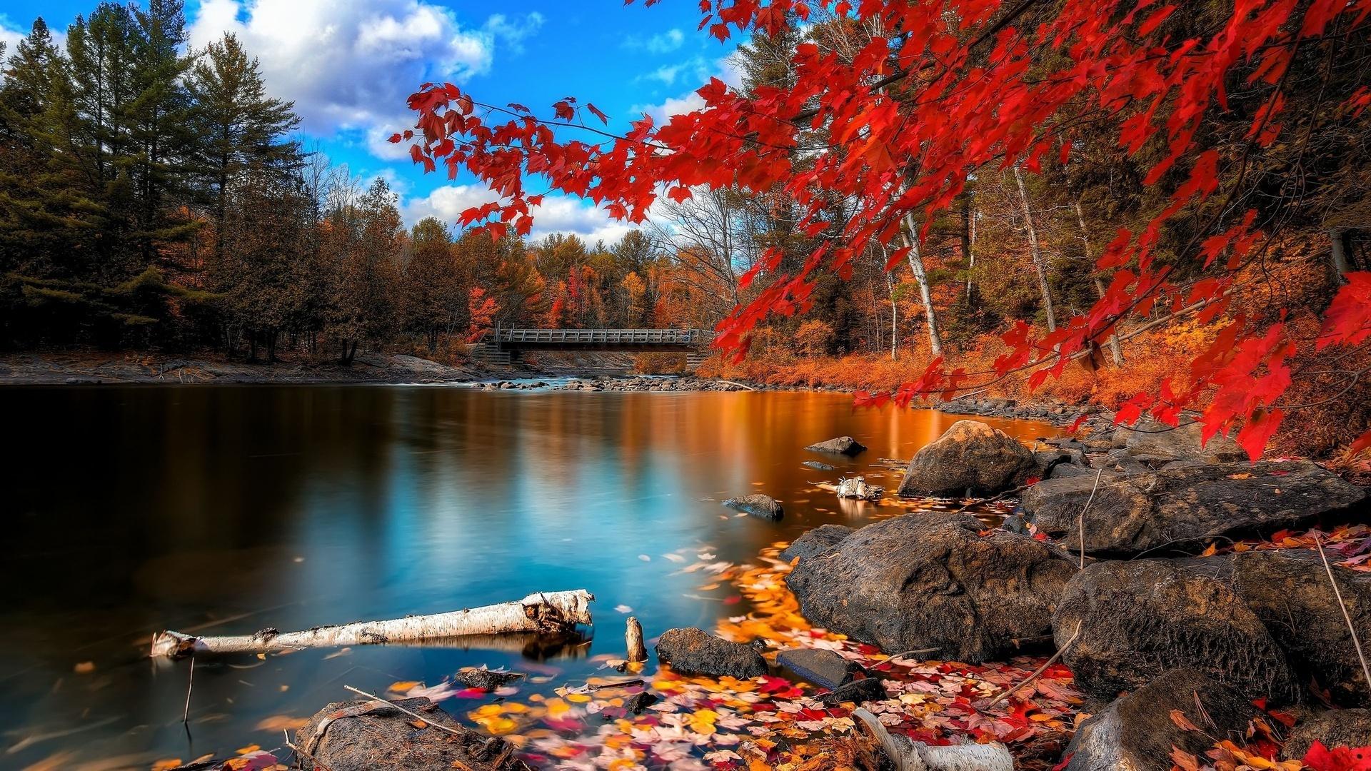 Great Wallpaper Minecraft Autumn - autumn_Wallpaper_011  Trends_33923.jpg