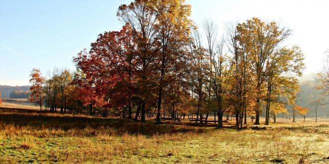 Autumn Scenery Wallpapers