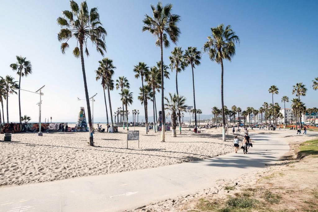 Venice Beach Wallpaper