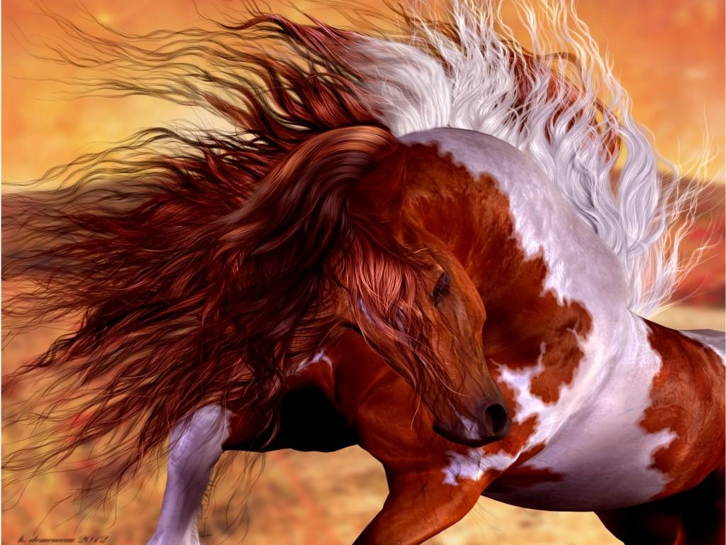 Wild Horse Wallpaper 2000x1500