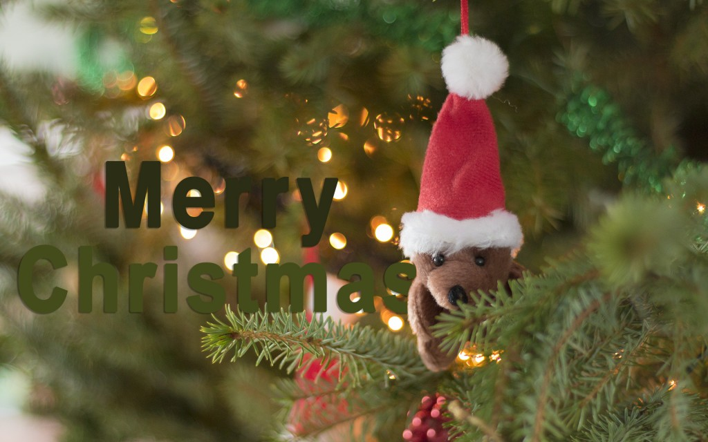 Merry Christmas Widescreen Wallpaper 1920x1200