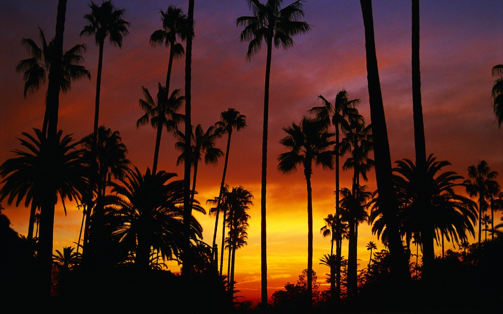 California Widescreen Wallpaper 2560x1600