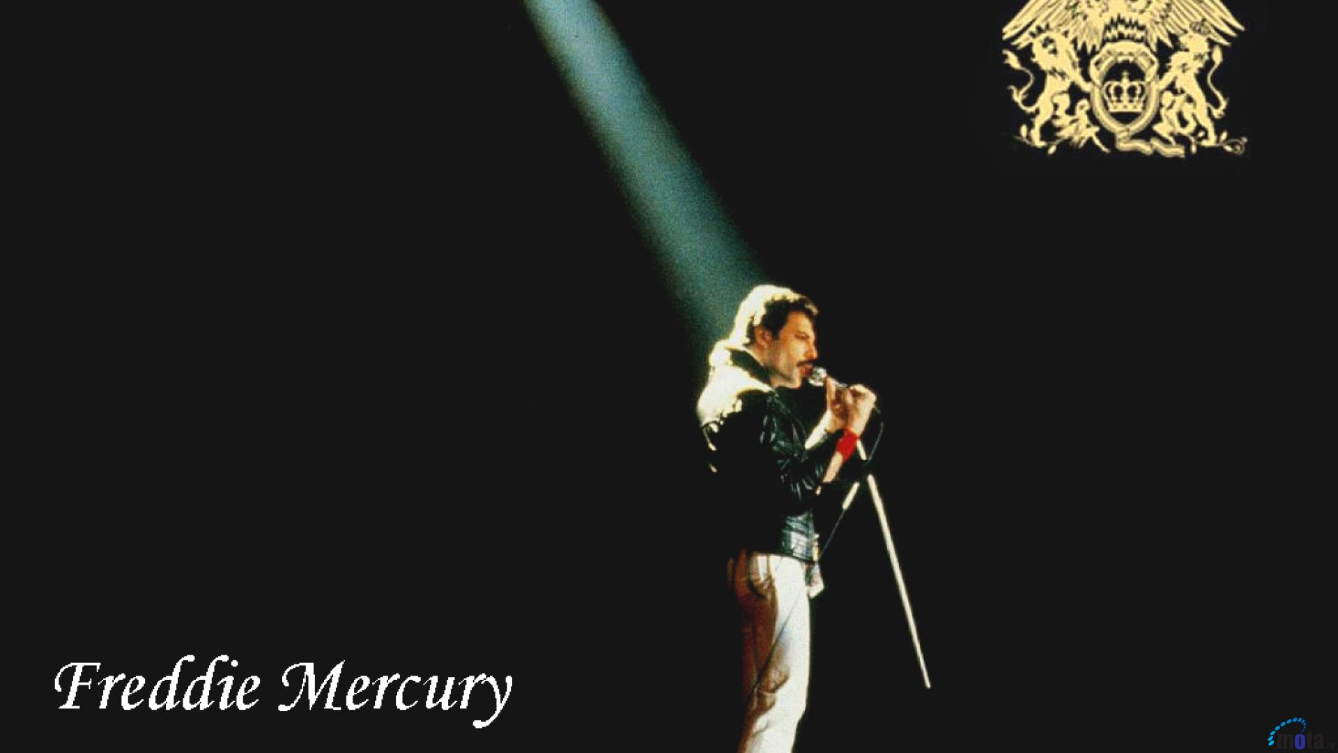 Freddie Mercury Wallpapers Pictures Images