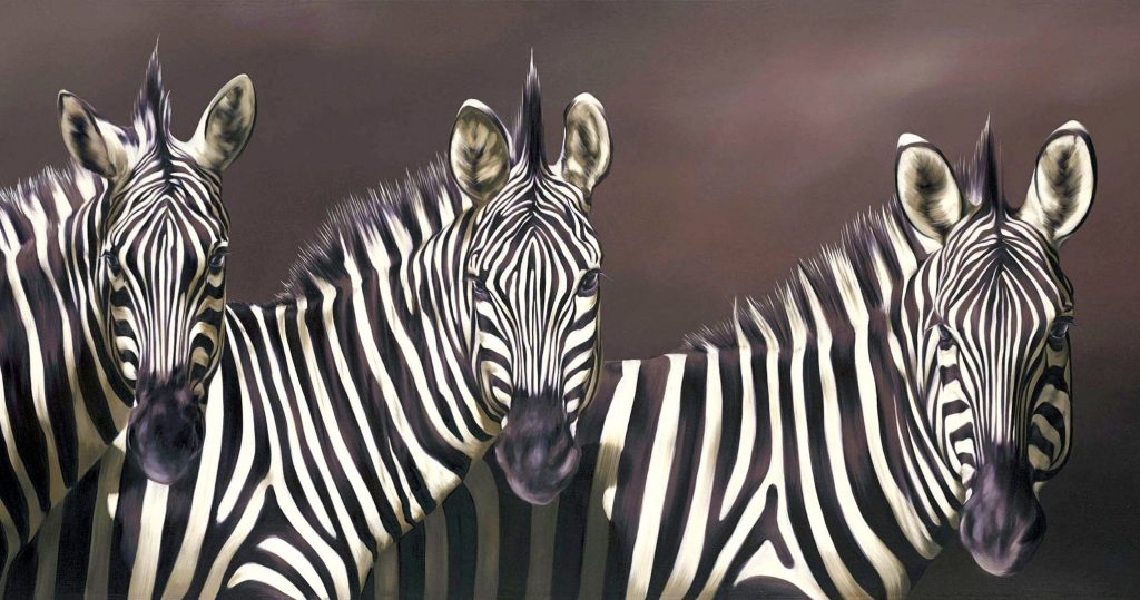 Zebra Wallpaper 2052x1080