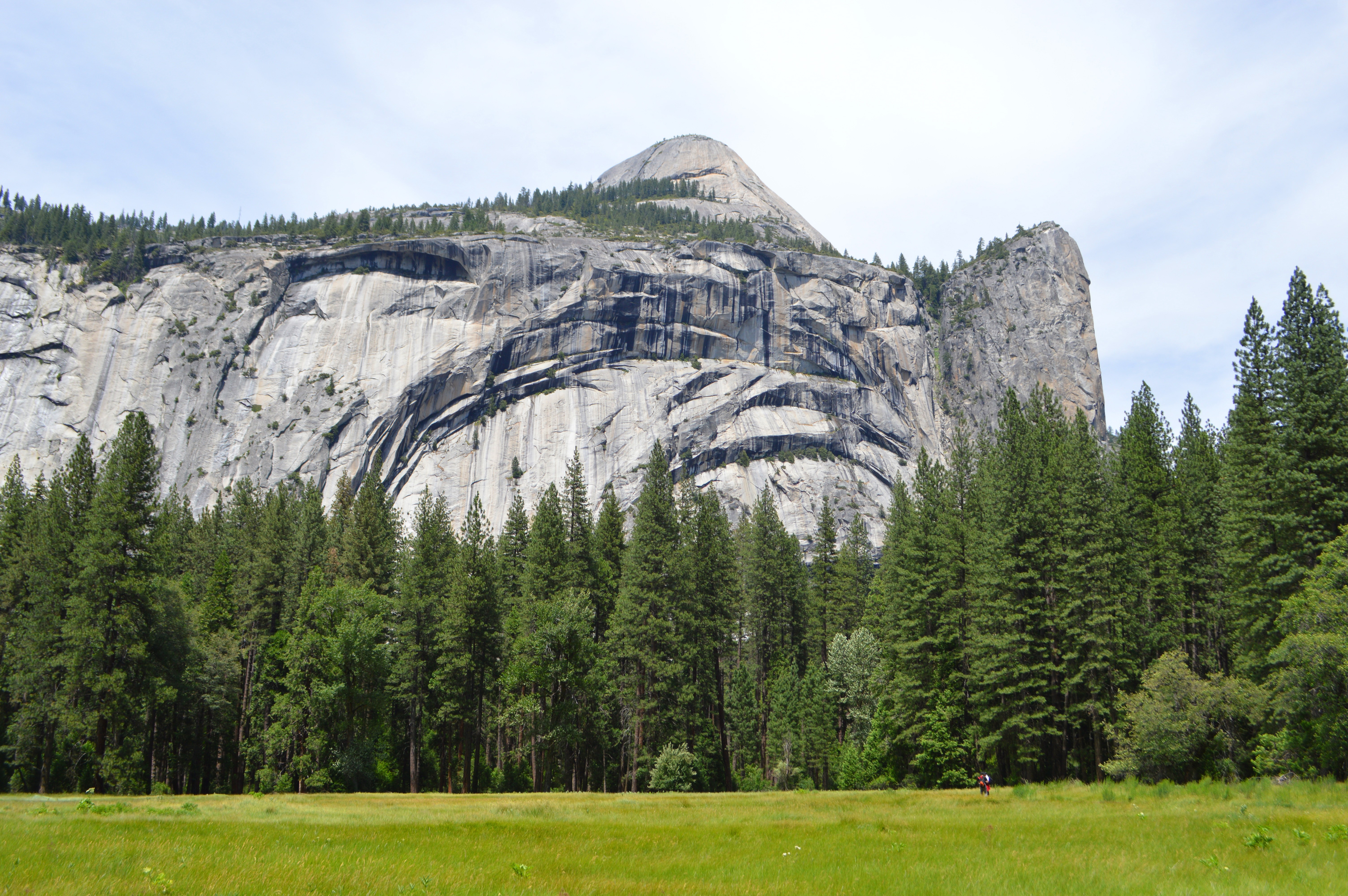 singles in yosemite national park Yosemite national park one day tour  single travelers  park rangers introduce some of yosemite's most famous sightseeing points in yosemite valley .