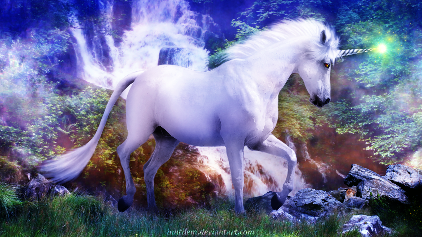 It's just a photo of Wild Picture of Unicorns