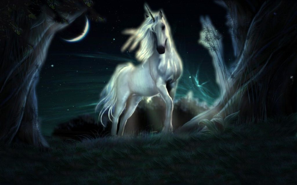 Unicorn HD Widescreen Wallpaper