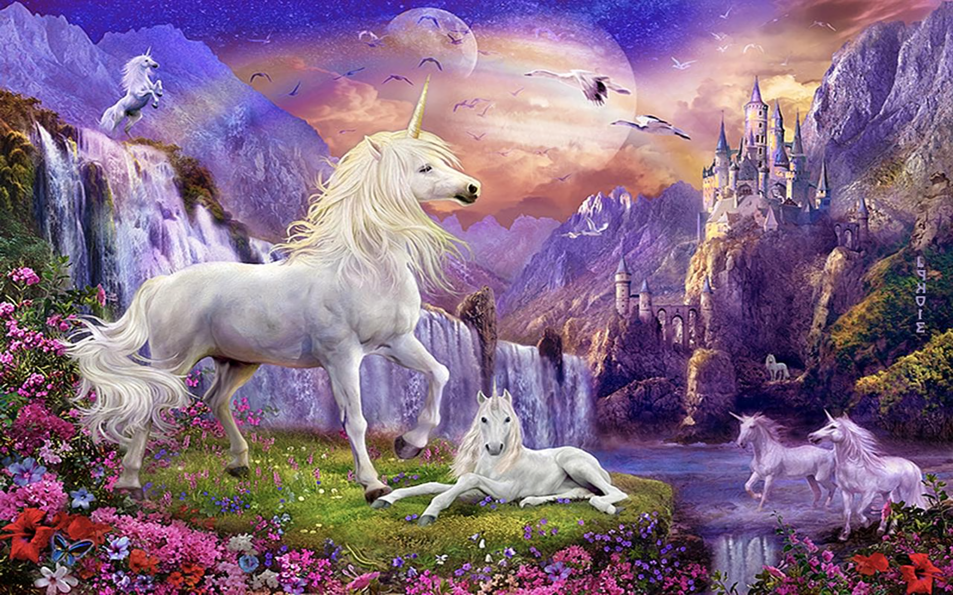 Unicorn backgrounds pictures images for Fantasy wallpaper hd