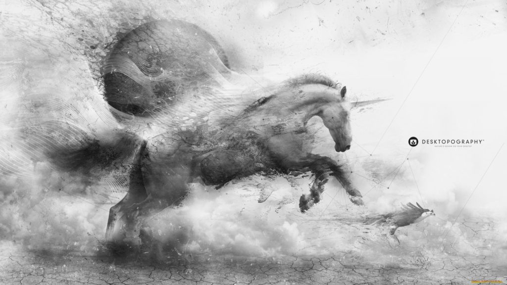 Unicorn HD Wallpaper
