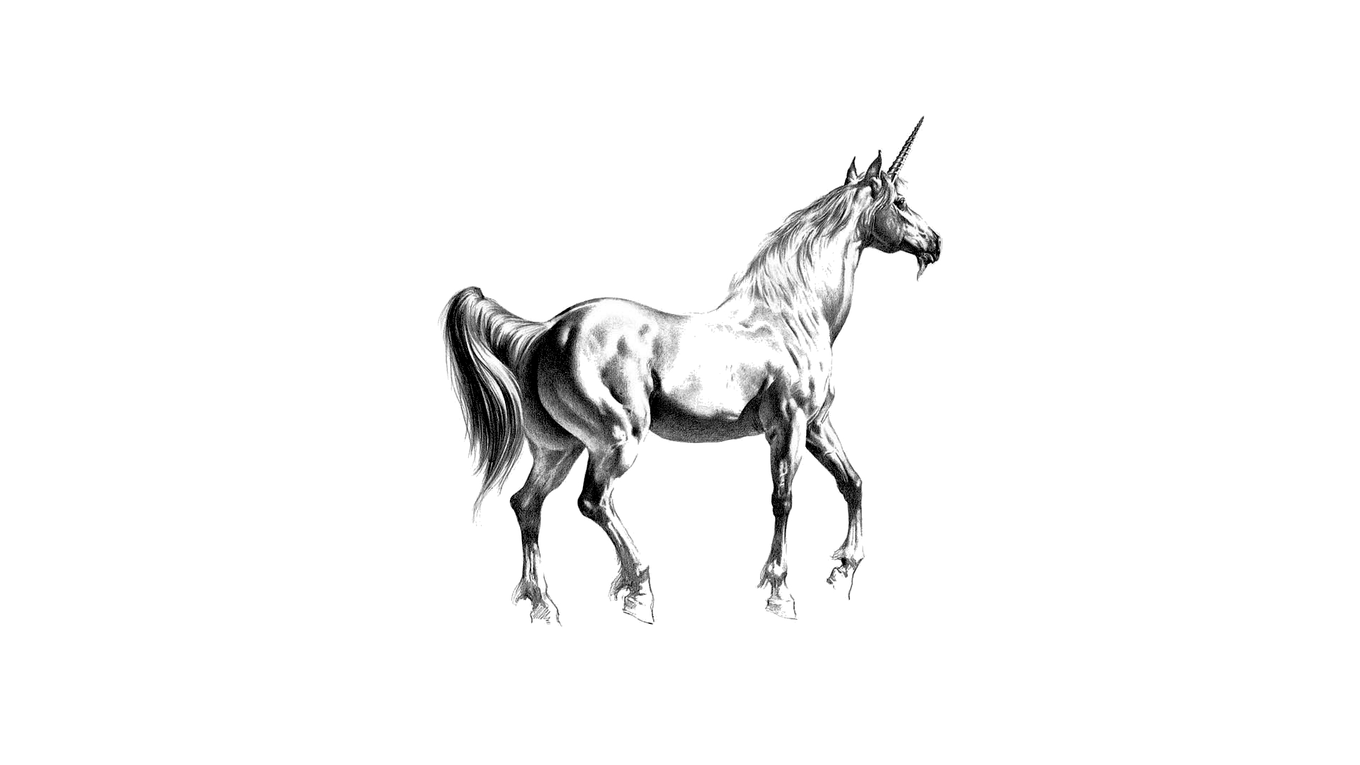 unicorn wallpapers full hd - photo #23