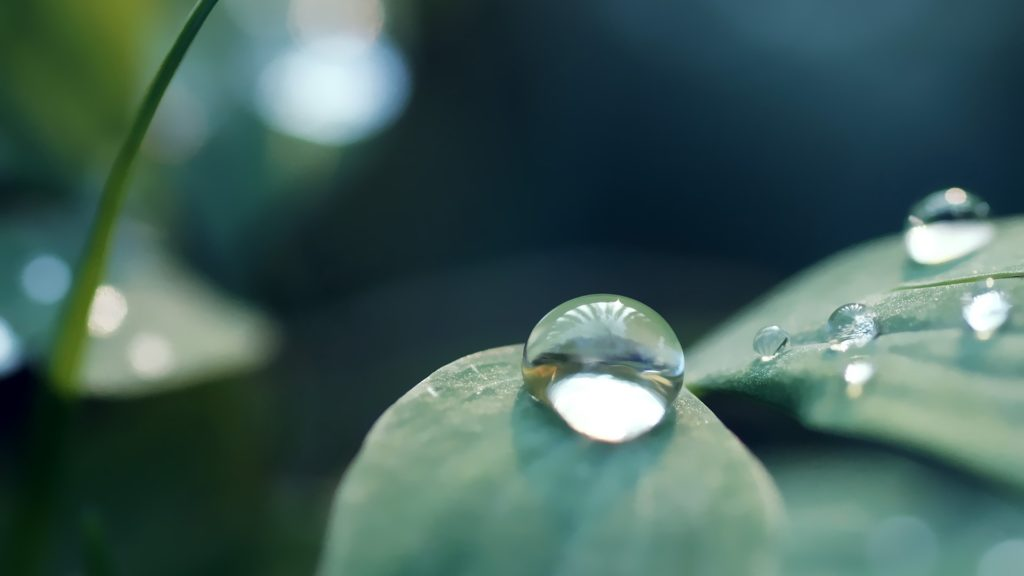 Water Drop Full HD Wallpaper