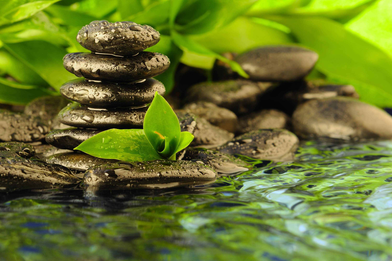 Zen Wallpapers Free Download by Paulo Macmakin