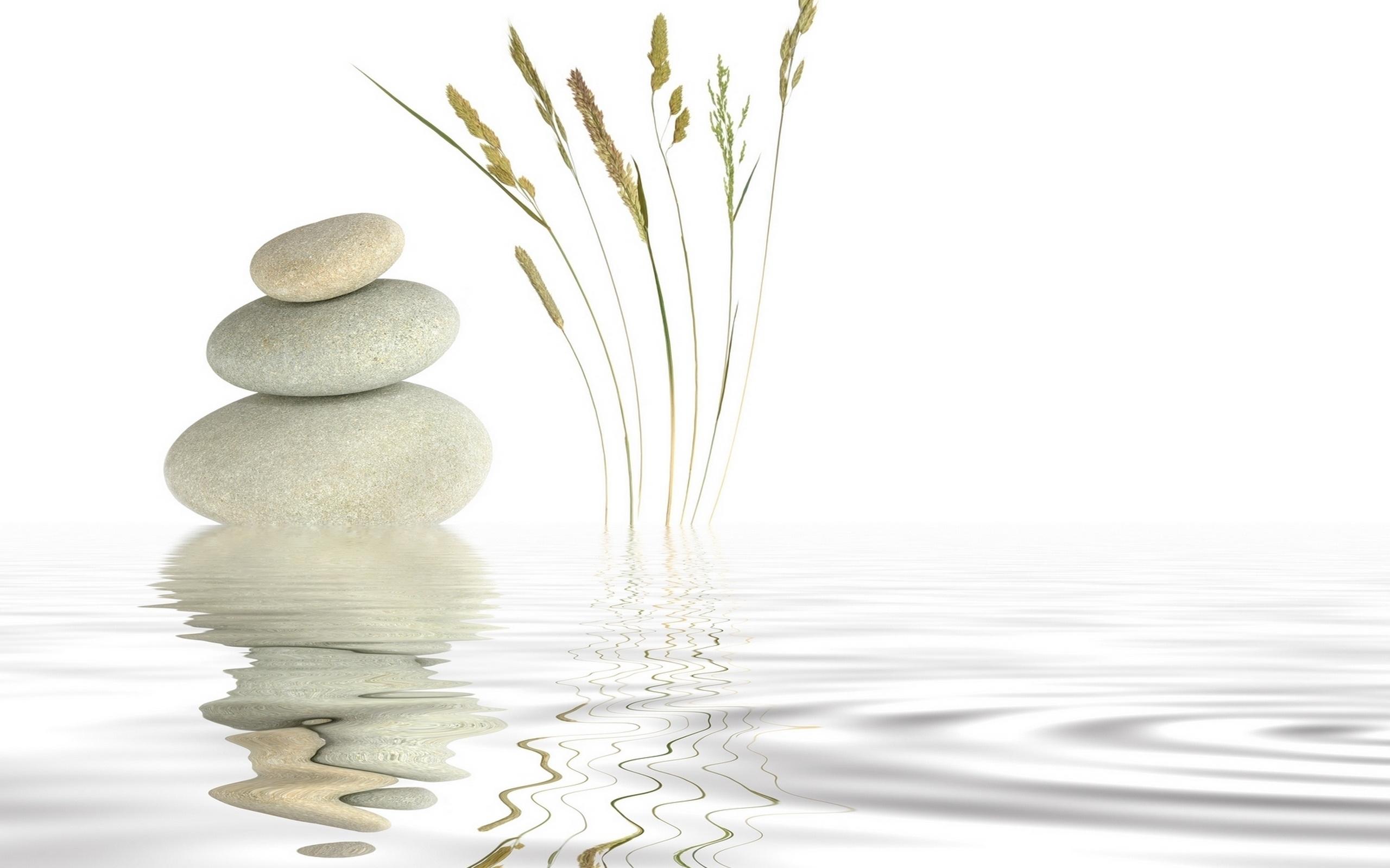 Hd wallpaper zen - Zen Widescreen Wallpaper