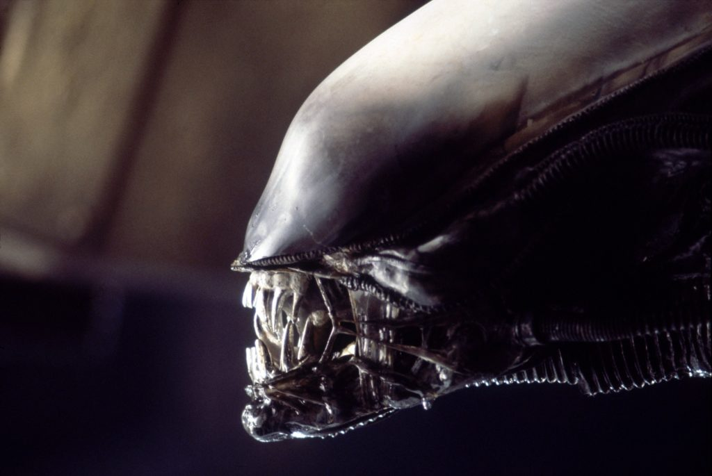 Alien Wallpaper 4092x2737