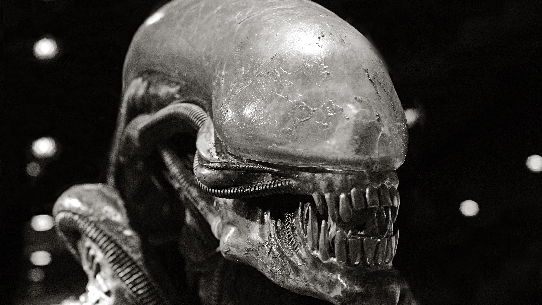 alien - photo #27