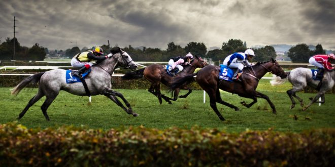 Horse Racing Wallpapers