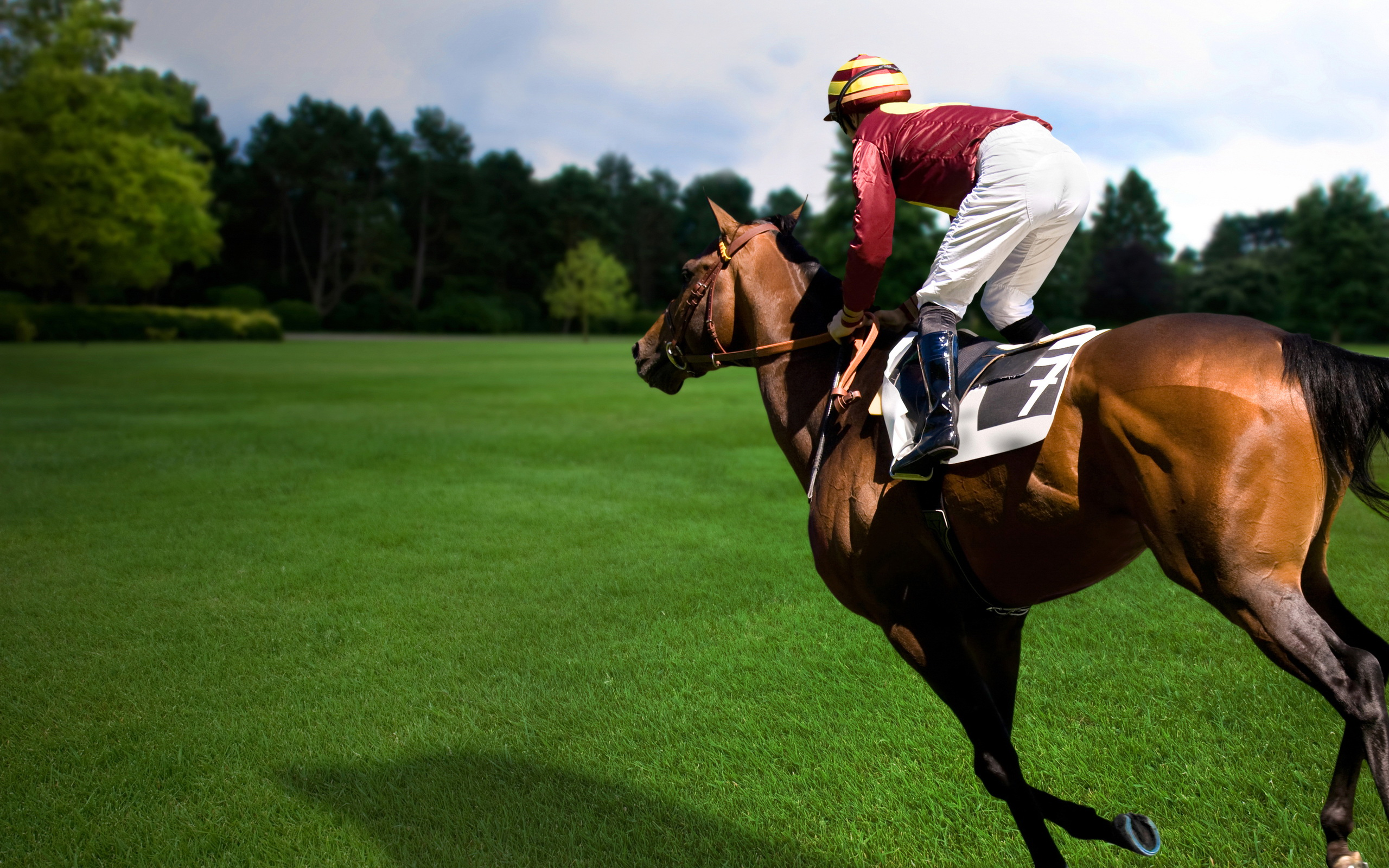 Horse Racing Wallpapers, Pictures, Images Race 2 Wallpapers Hd