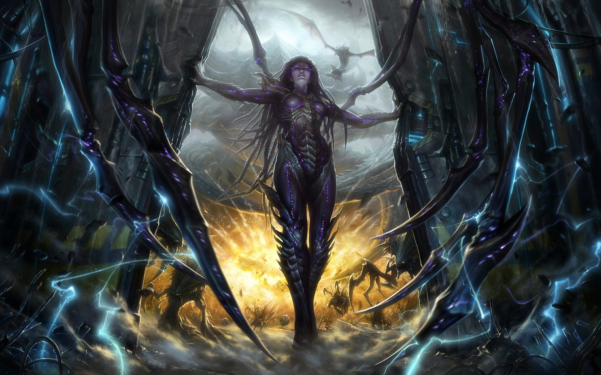 starcraft ii wallpapers pictures images