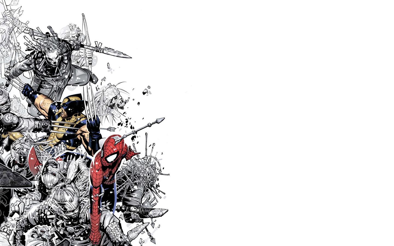 The Amazing Spider Man Widescreen Wallpaper