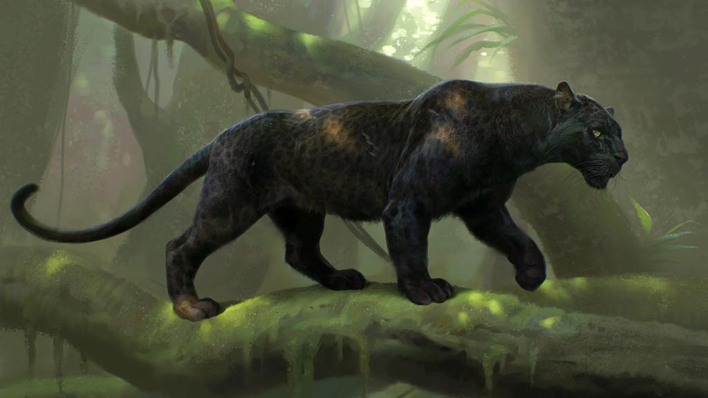 The Jungle Book (2016) Full HD Wallpaper