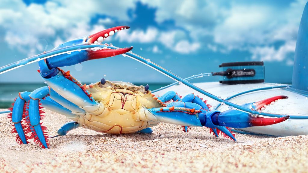 Crab Full HD Wallpaper
