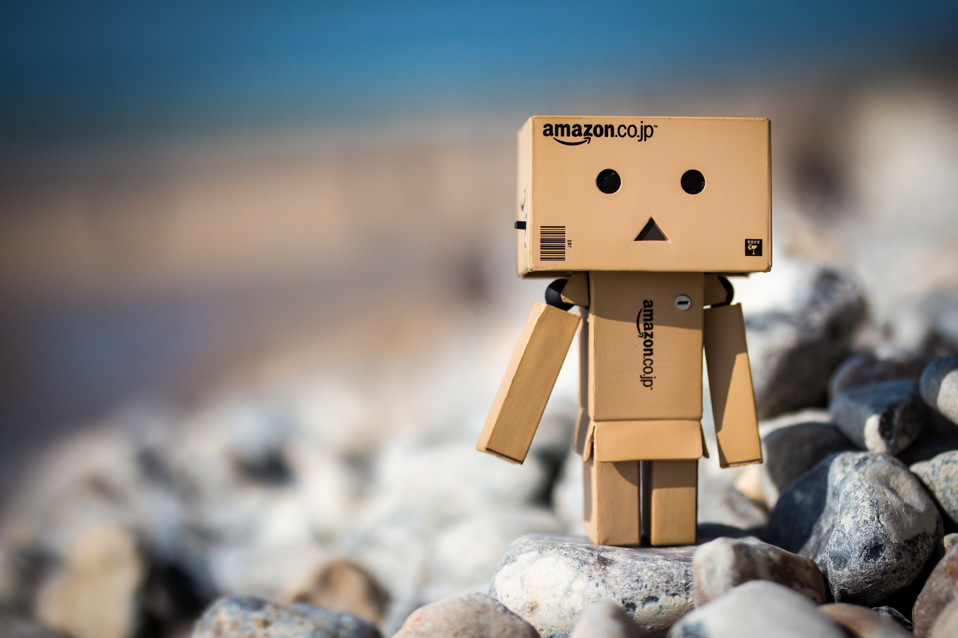 Danbo wallpapers pictures images - Amazon wallpaper hd ...