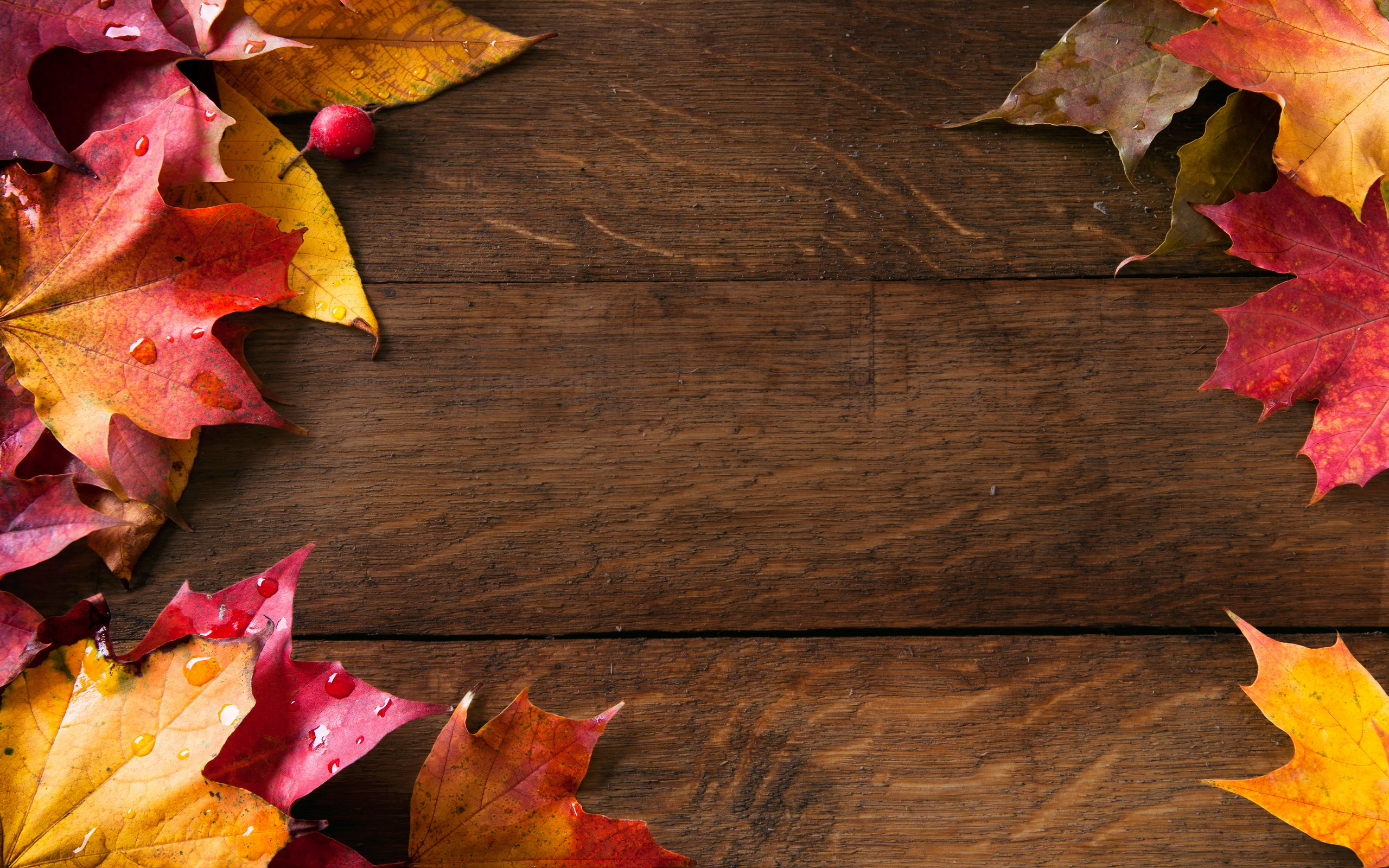 Fall Backgrounds Pictures Images
