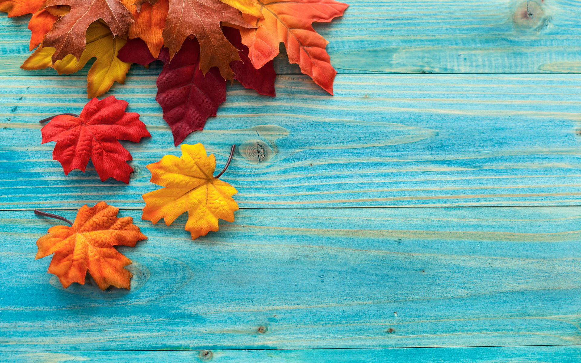 Fall Backgrounds on November Thanksgiving