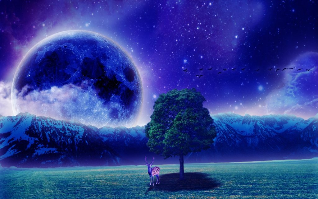 Fantasy Widescreen Wallpaper
