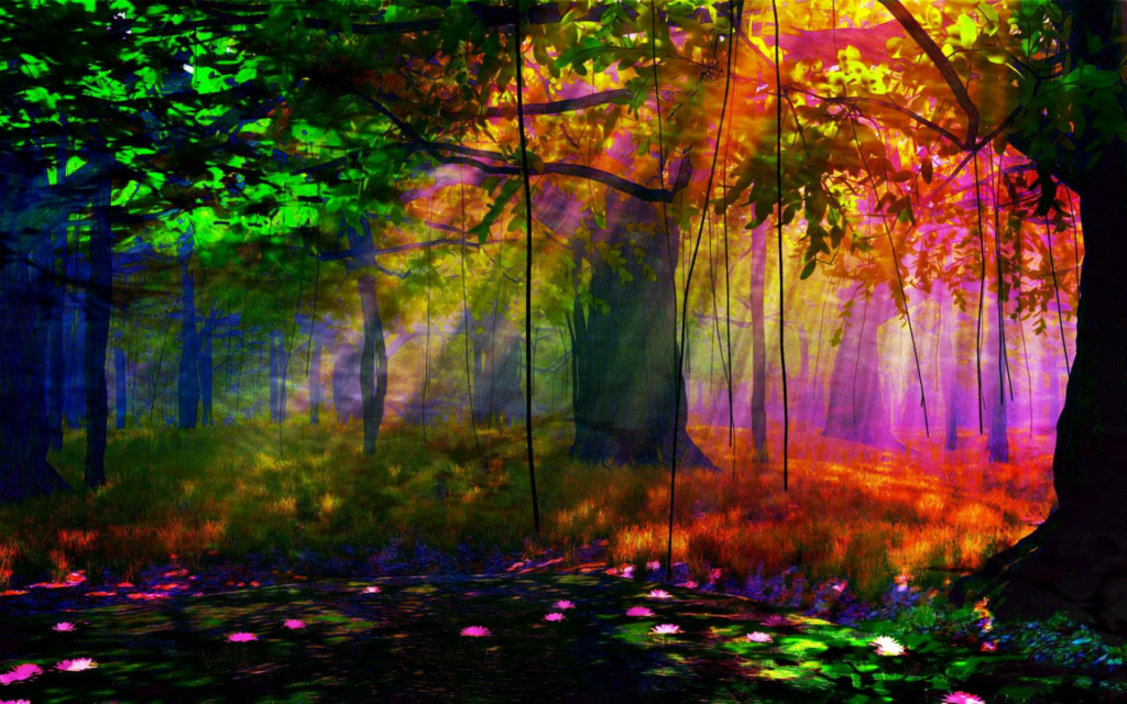Forest Widescreen Wallpaper