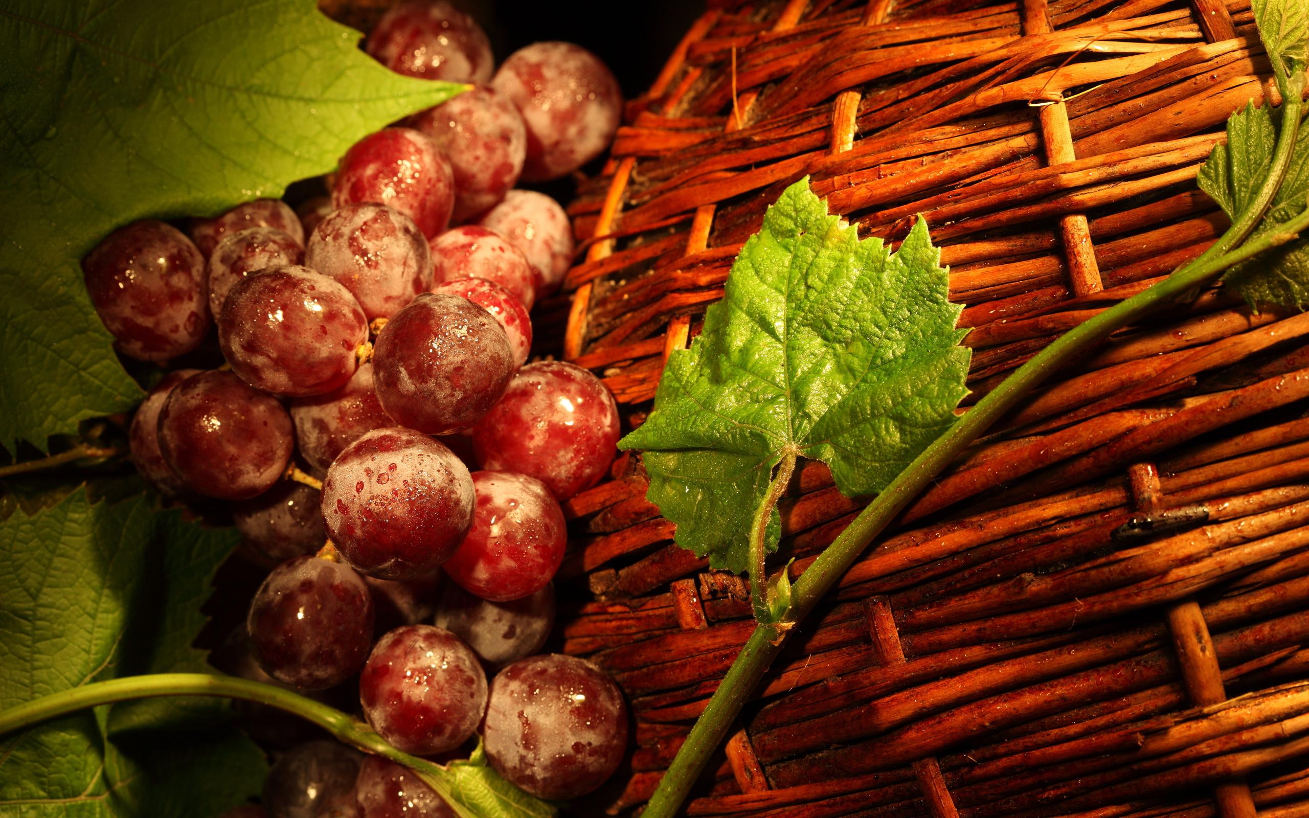 Виноград в корзине скачать