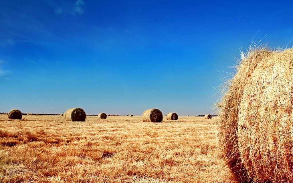 Haystack Widescreen Wallpaper