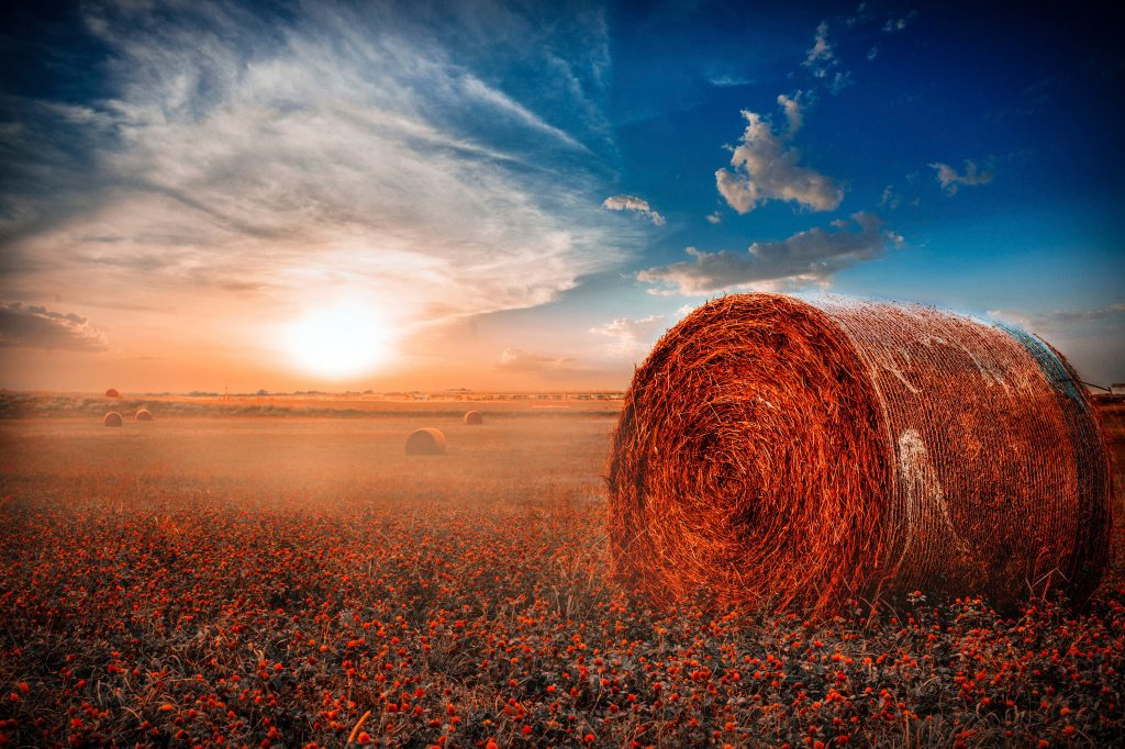 Haystack Wallpaper