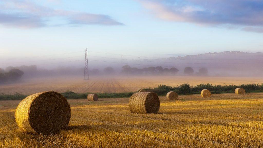 Haystack Full HD Wallpaper
