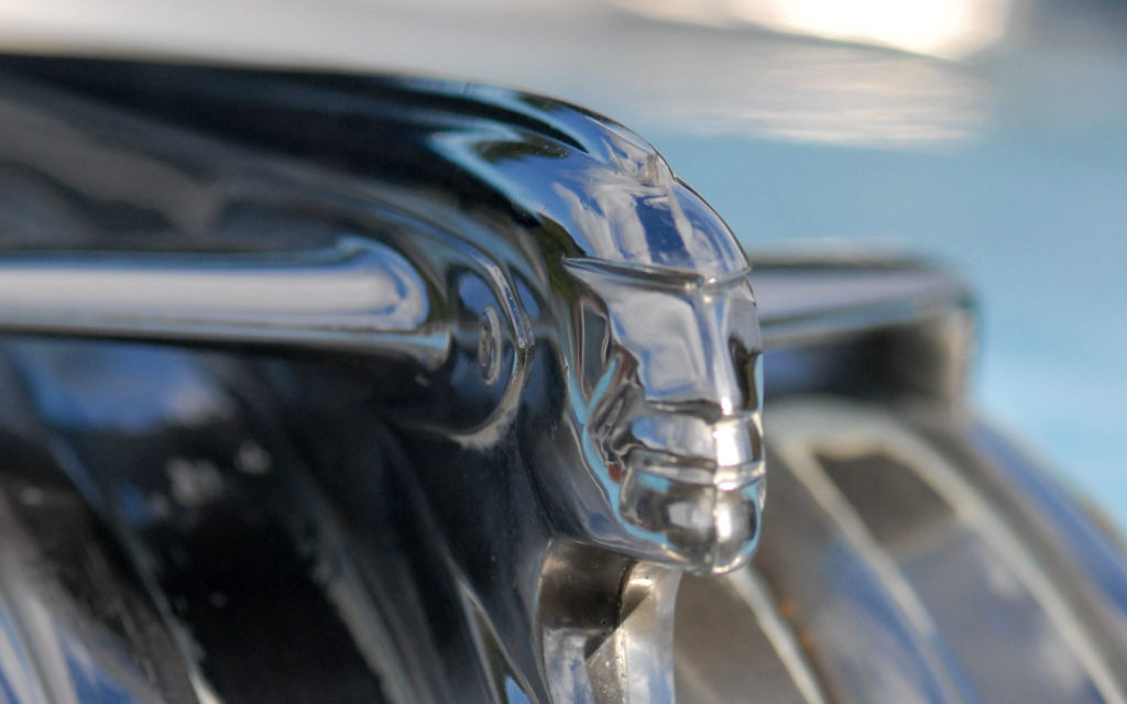 Hood Ornament Widescreen Wallpaper