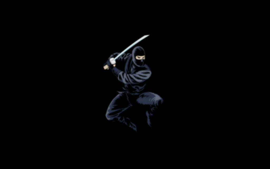 Ninja Widescreen Wallpaper
