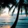Seascape Backgrounds
