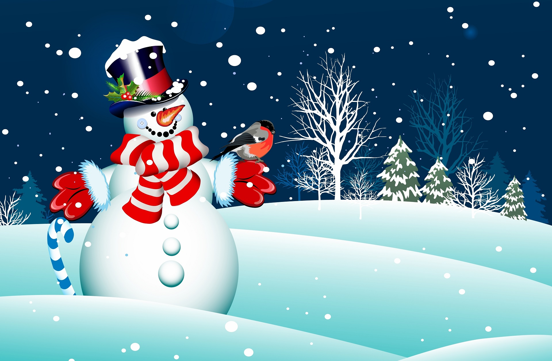 100 Holiday Desktop Backgrounds Hd Wallpapers: Snowman Wallpapers, Pictures, Images